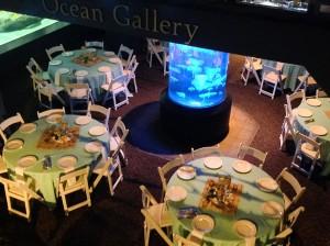 ocean-gallery
